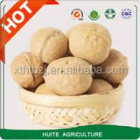 Light Xinjiang thin shell Walnuts