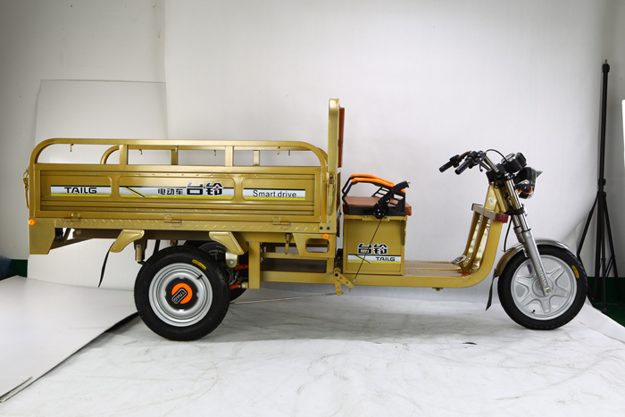 three wheel motorcycle for cargo 650W 60V20AH Electric tricycle adults