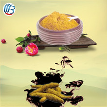 LanBing supply high quality free sample turmeric powder turmeric root extract pure curcumin