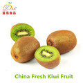 Fresh Chinese kiwi fruit for export