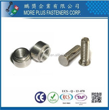 Taiwan Stainless Steel Clinching Fastener Screws And Fasteners Allen Decorative Screw Fasteners