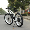 MOTORLIFE/SEB-1 New trendy classic fat tyres snow e-road electric bike,oreva electric bike
