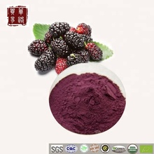 China Organic Mulberry Powder Suppliers Wholesale Pure Natural Organic Dried Mulberry Fruit Extract Powder