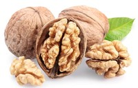 different types of dry nuts walnut buyers walnut for sale