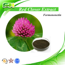 Hot Product Red Clove Extract With Isoflavones, Red Clover Extract Powder, 10%-80% Isoflavones