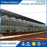 SINOLINK High Quality Multi Span Polycarbonate