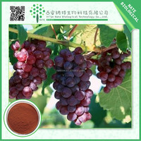 Factory supply Organic 60% Polyphenols Grape Seed Extract tested by UV