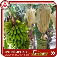 banana fruit growing paper bag for Taiwan