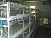 The Most Economical Battery Metal Chicken Cage / Chicken Coop for baby chicks HJ-YC400