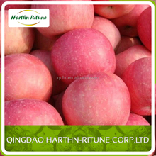 chinese apple fuji fruit specification
