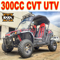 Side By side 300cc Rental UTV
