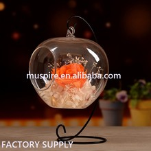 Wholesale Flowers in glass dome Hanging Glass Dome Glass Bell Jar