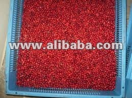 Fresh wild Huckleberry for sale (Vaccinium vitis-idaea)