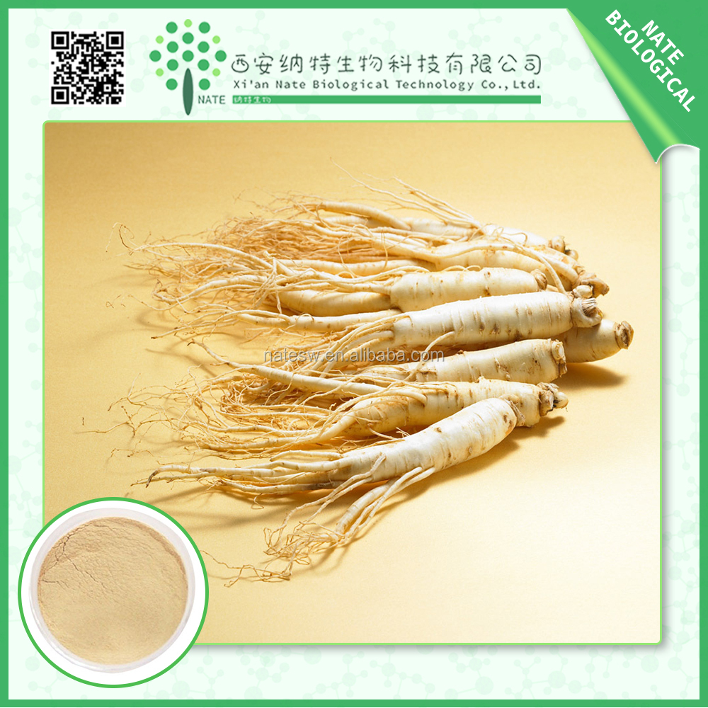 Healthy Supplements100% soluble in water Red ginseng P.E. panax ginseng extract panax ginseng berry extract