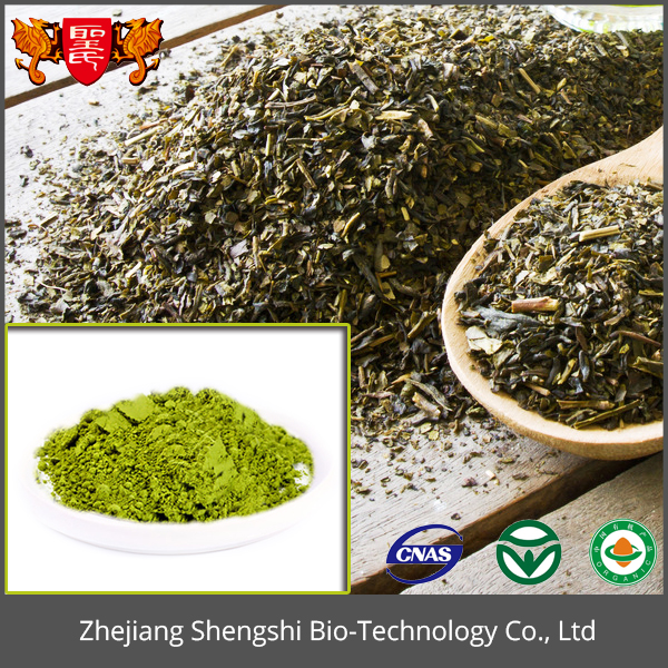 100% Natural Matcha Green Tea Extract Powder