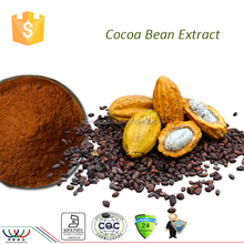 2016 best selling HACCP KOSHER FDA cGMP certified 45% cocoa polyphenol cocoa bean powder natural cocoa powder