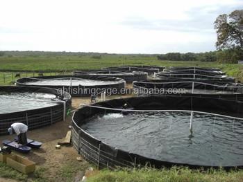 Round plastic fish pond for catfish farming buy round for Round fish pond