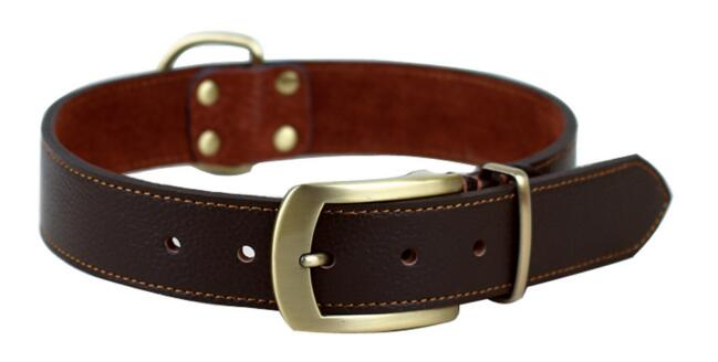 high quality dog collar leather