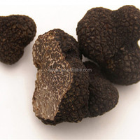 white or black fresh TRUFFLE exported to Italy