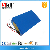 Lithium Polymer Battery Type 12V 40Ah LiFePO4 Battery Pack