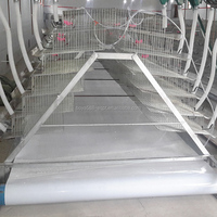 poultry manure belts conveyors for animal chicken cages