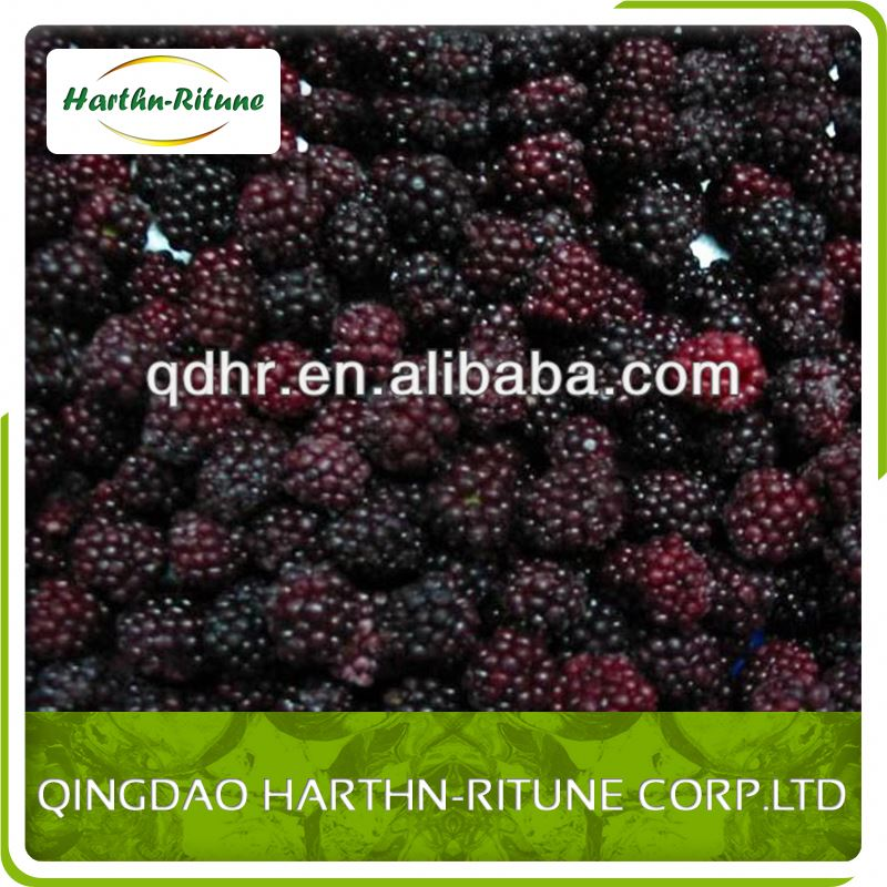 China Best Price Berries IQF Blackberry