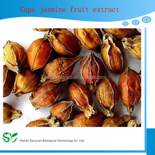 Natural high quality of Cape Jasmine Fruit Extract
