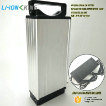 Japan 18650PF Cell Ebike Lithium Battery 48V 20Ah Li ion Battery Pack 1000W with 2A Charger