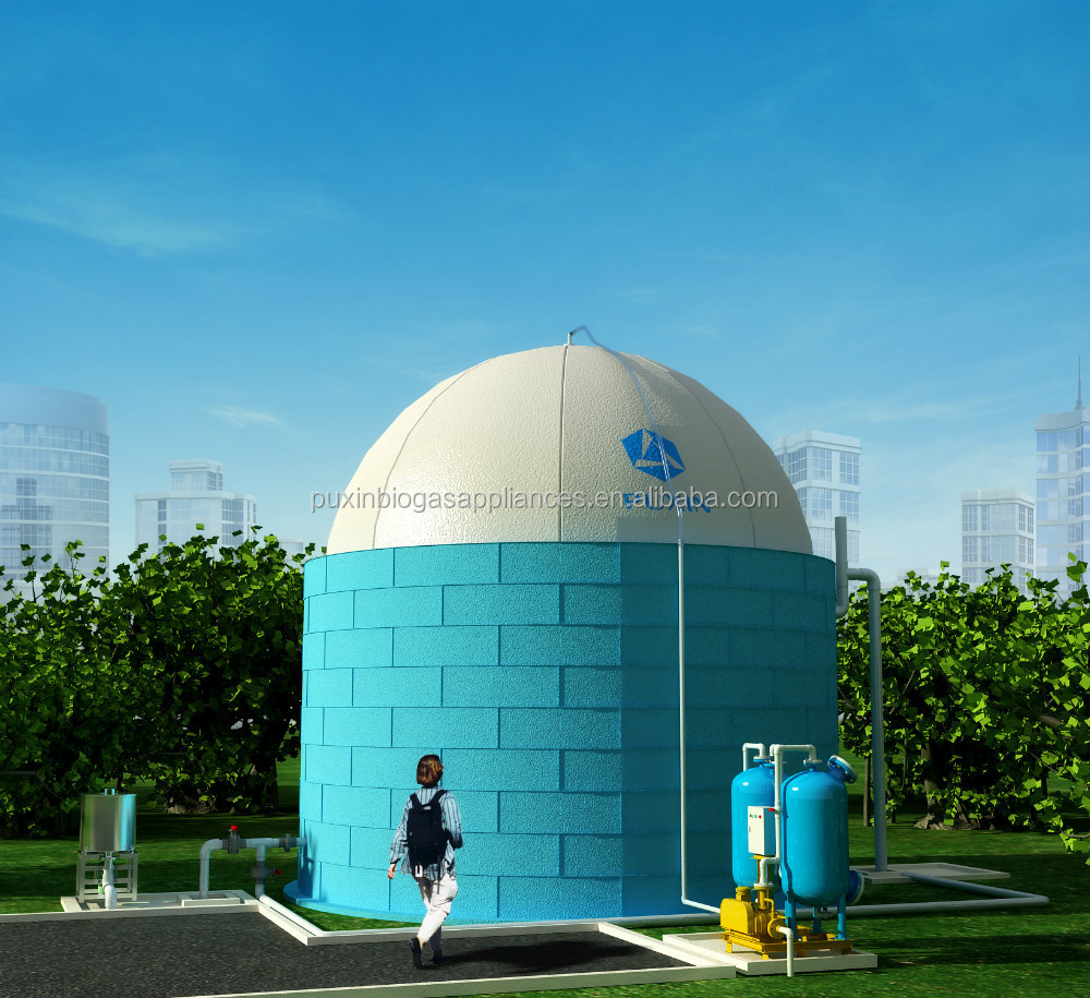 China Puxin High Quality 400m3 Soft Dome Biogas Digester For Kitchen ...