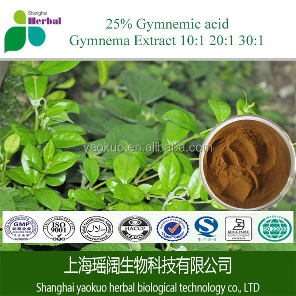 Free Sample Gymnema Extract,gymnema sylvestre extract,types of diabetes