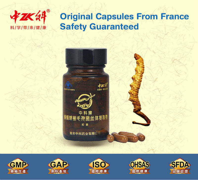 300mg health care supplement for lung and kidney, gaoderma cordyceps-lingzhi extract gold