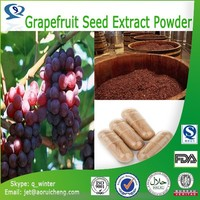 Natural Grapefruit Seed Extract Powder anthocyanin OPC 95% grape seed extract