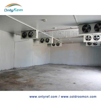 ice cream storage cold room with condensing unit