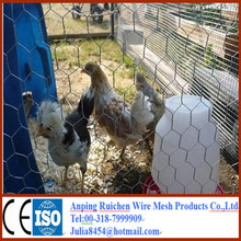 chicken wire mesh cage