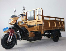 Wide Pedal and Passenger Seats 2 Meter Cargo Box Gas Motor Cargo Tricycle with Double Keel for Sale