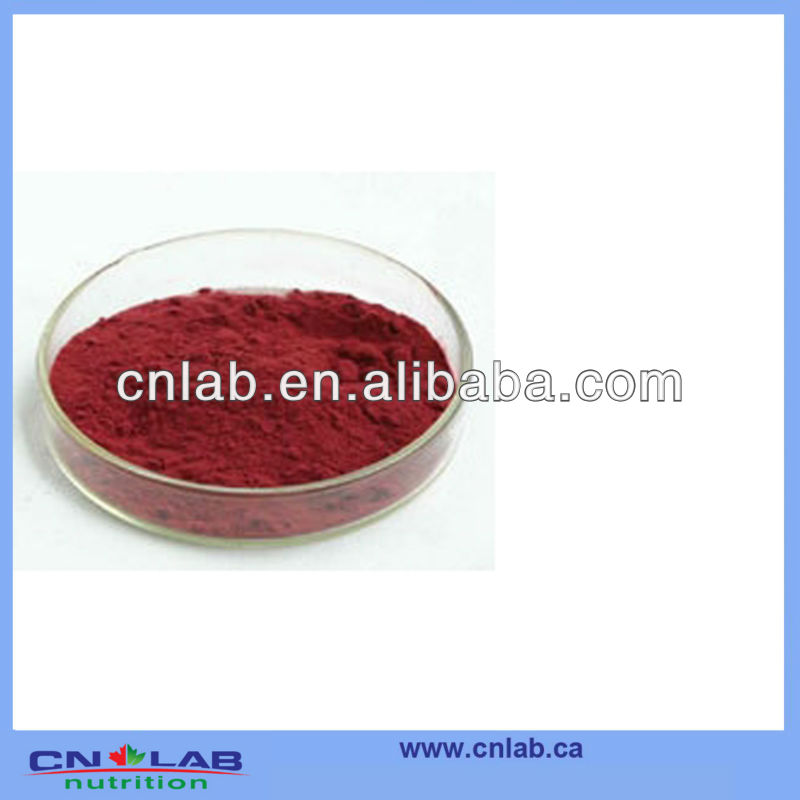 GMP/ISO/HALAL brazilian acai berry good supplier from China