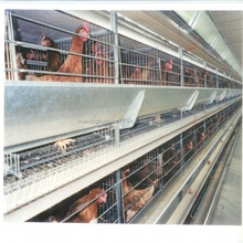 wholesale price good quality uganda layer farm chicken cage for sale