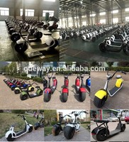 2016 hot selling 1000w 60v citycoco 2 wheels electric scooter motorcycle