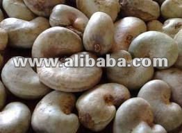 Raw cashew nuts from Ghana