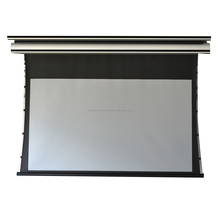 Factory Direct Sales customize ISO cheap projection screen