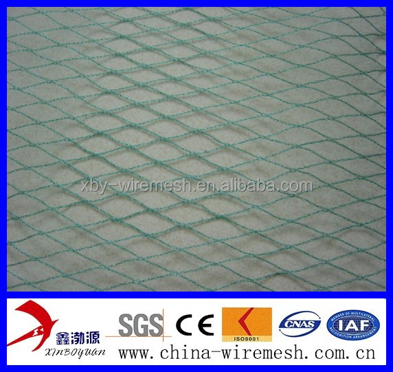 Knotted anti-bird netting for protecting fruits and vegetables, made of PP, hot sale, <strong>17</strong> x 17mm, 37g