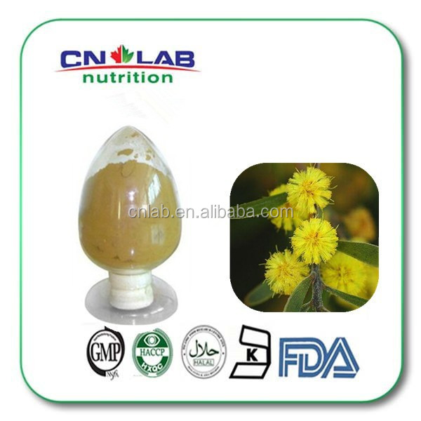 Qualified Blackbrush Acacia Extract Powder for Human Health