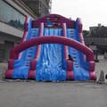 inflatable amusement park slide/purple inflatable slide for sale