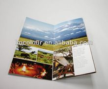 Professional brochure sample for book