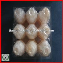 Donguan manufacture clear PET egg tray with secure fram and button joints-9 pcs