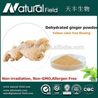 Europe quality standard dehydrated ginger root powder