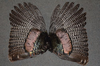 Matched Pair Wild Turkey Wings Crafts Arrow Fletching Fly Tying Feathers Fan NR