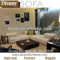 Divany Modern sofa timber furniture