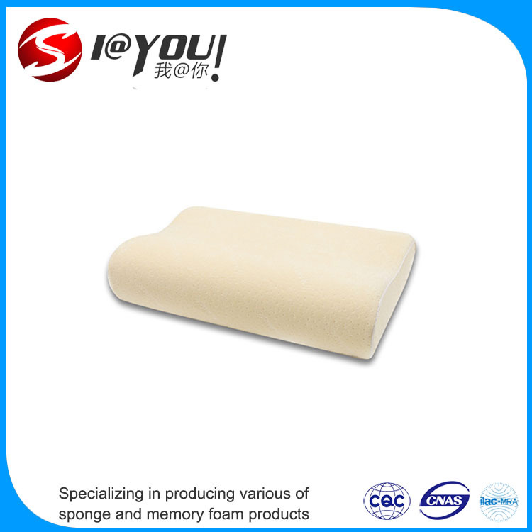 Sleeping Healthy Goods Memory Foam Pillow