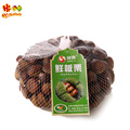 hot sale hebei new crop fresh chestnut nuts